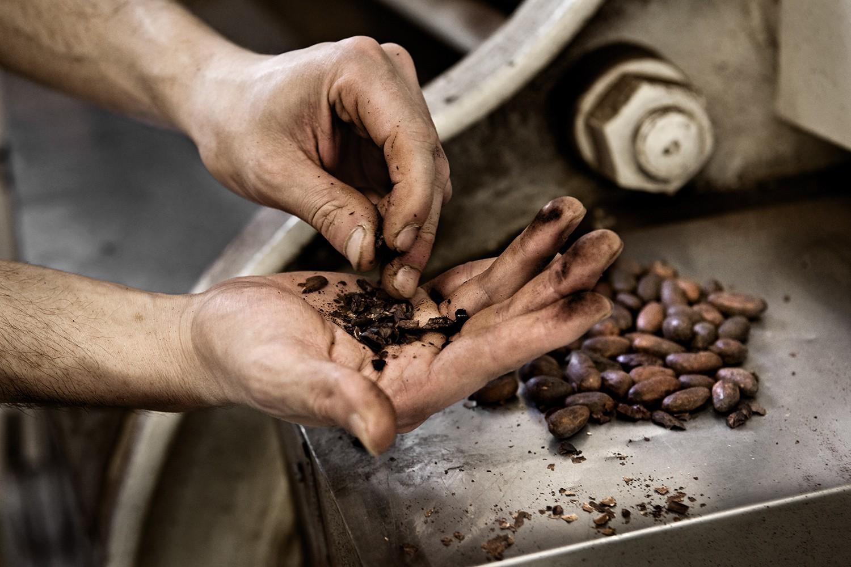 fave di cacao durante la tostatura, amedei